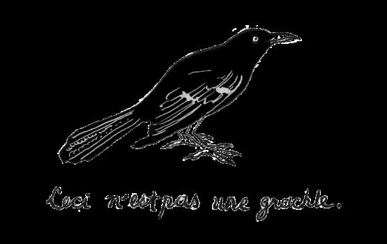 Eva-Magritte-grackle